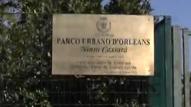 rifiuti parco cassarà palermo, Palermo, Cronaca