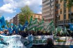 """""""A rischio 5 mila lavoratori"""": guardie giurate siciliane in piazza a Palermo - Video"""