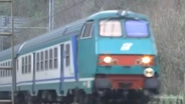 bovini investiti dal treno, Caltanissetta, Cronaca