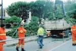 Alberi da abbattere a Trapani, la protesta dei cittadini blocca le operazioni