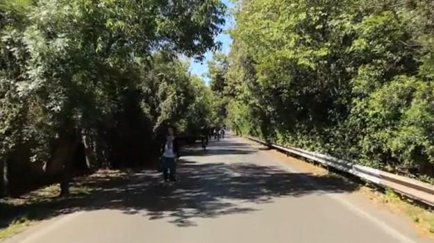 auto rubata palermo, parco della favorita, Palermo, Cronaca