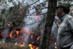 Scirocco e primi incendi: sulle Madonie fuoco vicino alle case, chiuso tratto dell'autostrada