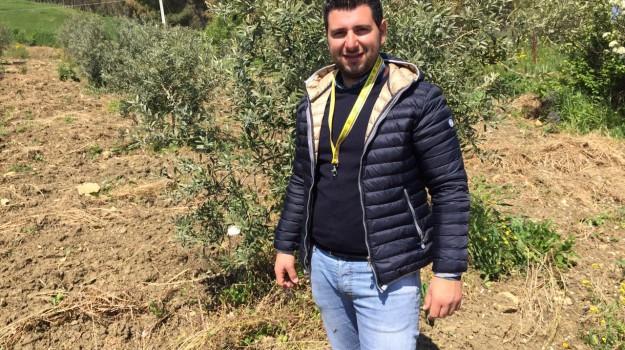 AGRICOLTURA, giovani, imprenditori, Sicilia, Economia