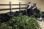 Palermo, scoperta una piantagione sotterranea di marijuana allo Zen