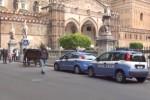 Pasqua a Palermo, rafforzate le misure di sicurezza