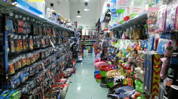 giocattoli, guardia di finanza, prodotti non sicuri, Siracusa, Siracusa, Cronaca