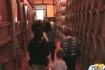 Alla scoperta del vino, cantine aperte in Sicilia