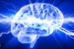 """Dotato di un """"motore economico"""", ecco come il cervello consuma poche calorie"""