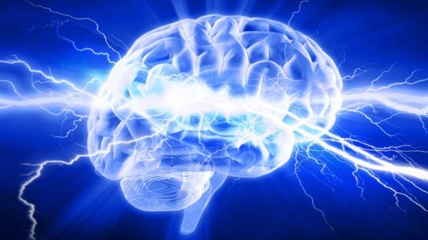cervello calorie, motore economico, Sicilia, Società
