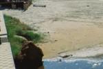 Realmonte, spiaggia inquinata: «C'è una fogna al lido Rossello»
