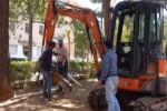 Aree per i cani nelle ville Sperlinga e Trabia, operai al lavoro a Palermo - Video