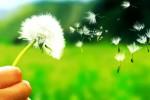 Il clima fa i capricci: aumentano le allergie nei bambini