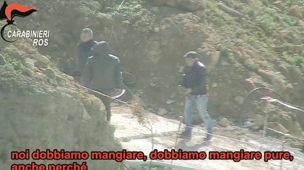 Blitz, mafia, marsala, Trapani, Cronaca