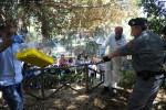 Al Parco d'Orlèans liberati 150 cardellini sequestrati a Ballarò