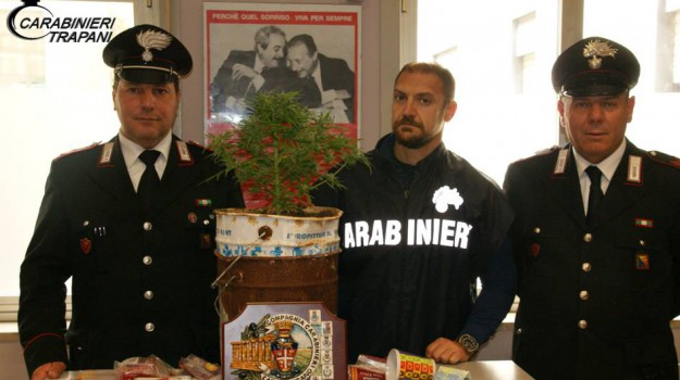 carabinieri, CASTELVETRANO, droga in casa, droga marijuana, Trapani, Cronaca