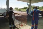 Carlentini, «spaccata» in un'area di servizio: rubati i soldi del self-service