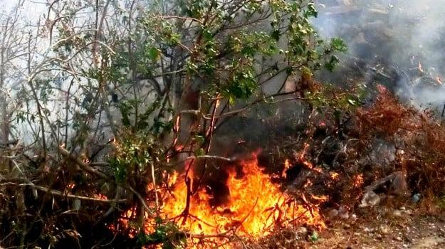 anziano ustionato caccamo, muore bruciato a Caccamo, Palermo, Cronaca