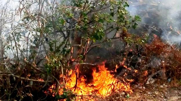 incendio, ribera, Agrigento, Cronaca
