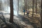 L'incendio a Montallegro
