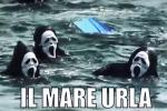 """""""Fermate il 'mostro' della plastica in mare"""", Marevivo lancia un appello ai grandi della Terra - Video"""