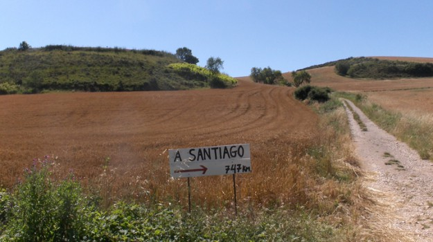 bici, cammino di santiago, Gela, santiago, Caltanissetta, Società