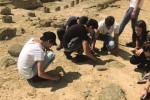 Studenti nella Valle dei Templi a scuola di archeologia