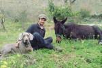 A piedi per l'Italia con un mulo: viaggio di un ingegnere palermitano