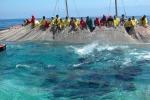 Marsala, in agitazione la marineria per le quote tonno