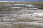 Siccita': geologi, abbassate le falde idriche sotterranee