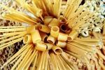 Coldiretti, con speculazione su grano a rischio 300 aziende