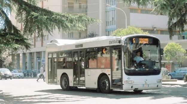 bus caltanissetta, trasporto urbano, Caltanissetta, Cronaca