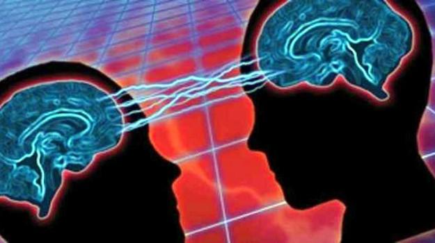 cervello femminile, cervello maschile, differenza uomini donne, Journal of Alzheimer's Disease, Sicilia, Società