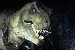 Il dinosauro T. Rex aveva le squame come quelle dei rettili