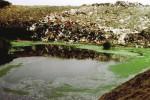 Caltanissetta, 200 mila euro per smaltire il percolato della discarica