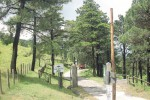 Parco dei Peloritani, la battaglia diventa trasversale