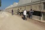 Vivevano in case fatiscenti e lavoravano per 25 euro al giorno, 26 operai sfruttati a Vittoria - Video