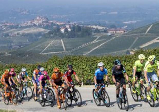 In Batteri Intestino Possibile Nuova Frontiera Del Doping Giornale Di Sicilia