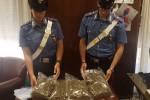 Nascondevano due chili di marijuana in un magazzino: un arresto e una denuncia