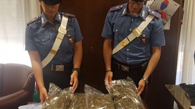 droga, marijuana, Monreale, Palermo, Cronaca