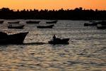 Salvo menu estivo, il pesce di mare non soffre il caldo