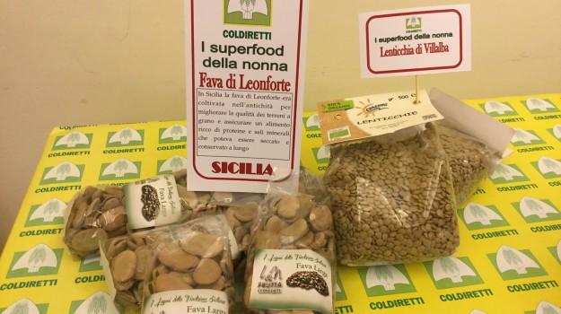agricoltura biologica, coldiretti, fava di leonforte, lenticchia di villalba, Enna, Economia