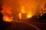 Incendio tra i boschi, tragedia in Portogallo: 61 morti, molte vittime intrappolate in auto