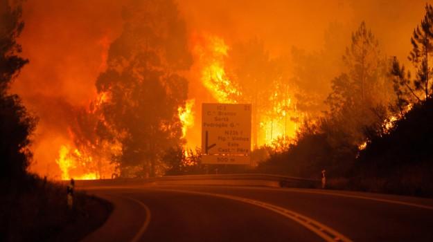 incendio portogallo, Sicilia, Mondo