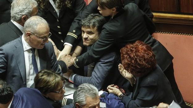 ius soli, Lega, partito democratico, Senato, Sicilia, Politica