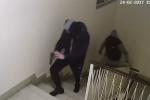 Maschere e pistola in pugno, colpo all'assicurazione - Video