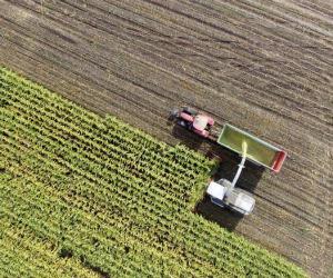 Ok Ue all'acquisizione di Bayer da Monsanto