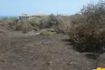 Scirocco in Sicilia, vasti incendi nel Messinese