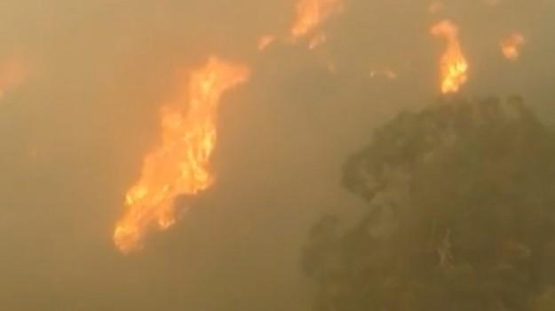 incendi a messina, Messina, Cronaca