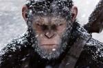 """""""Il pianeta delle scimmie"""", la saga campione di incassi torna con il terzo capitolo: il trailer"""