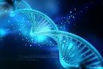 Taglia-incolla Dna, mondo scientifico invita a cautela